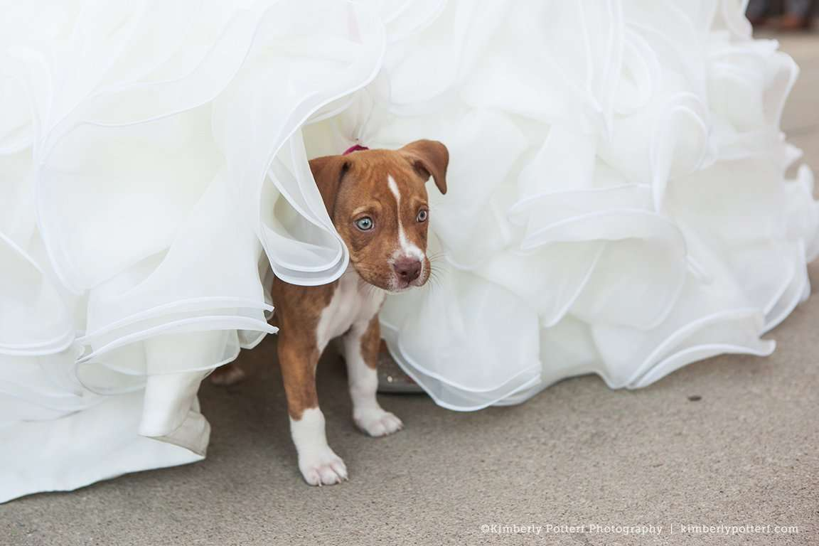 viavecchia_columbus_wedding_0007