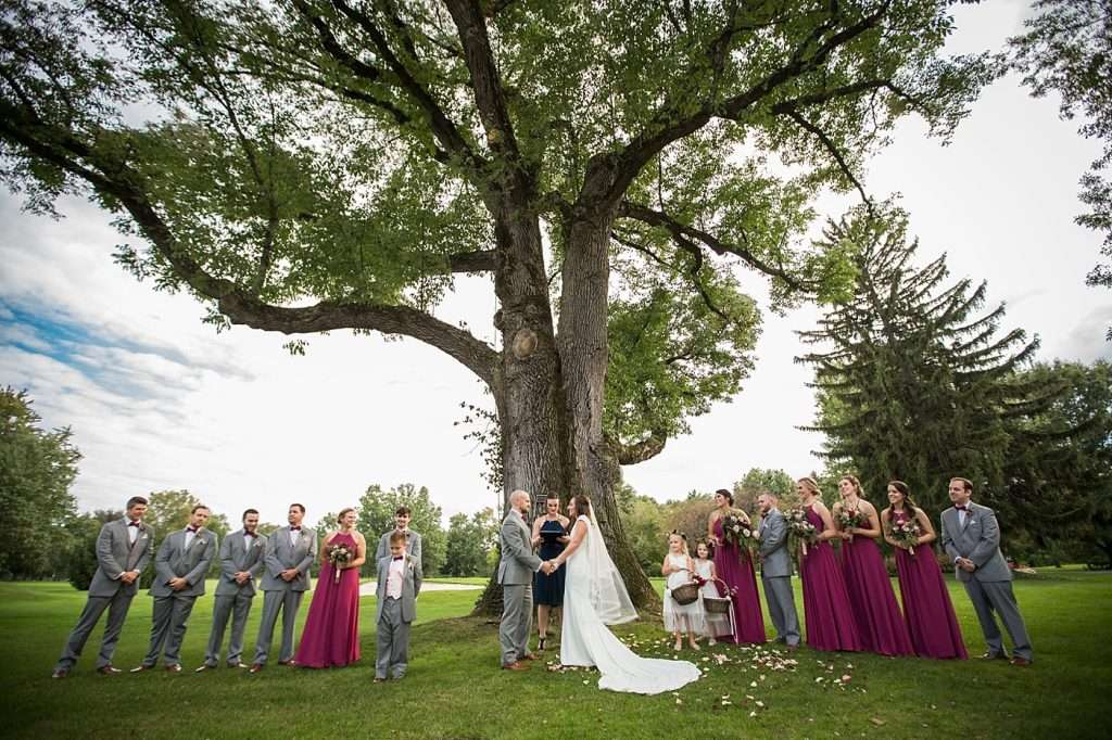 wide angle shot of an outdoor wedding ceremony taking place under a large tree