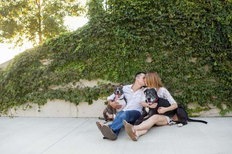 Couples & Engagements 92